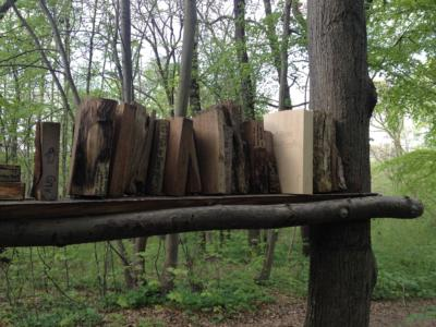 Waldbibliothek