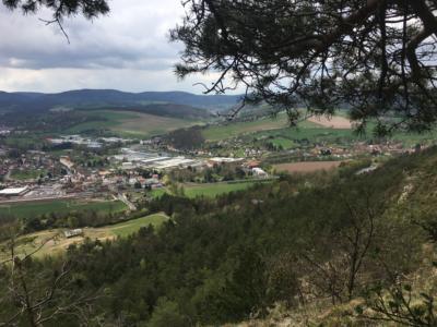 Blick vom Hörselberg